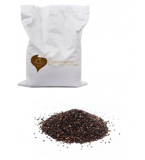 farina di quinoa nera
